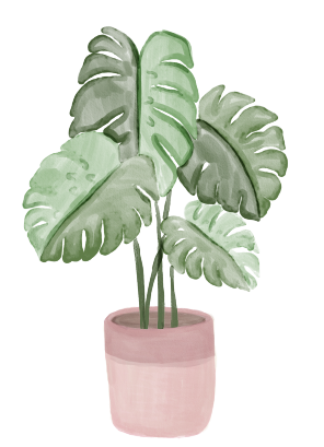plants.png (112 KB)