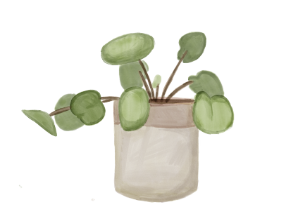 plants2.png (77 KB)